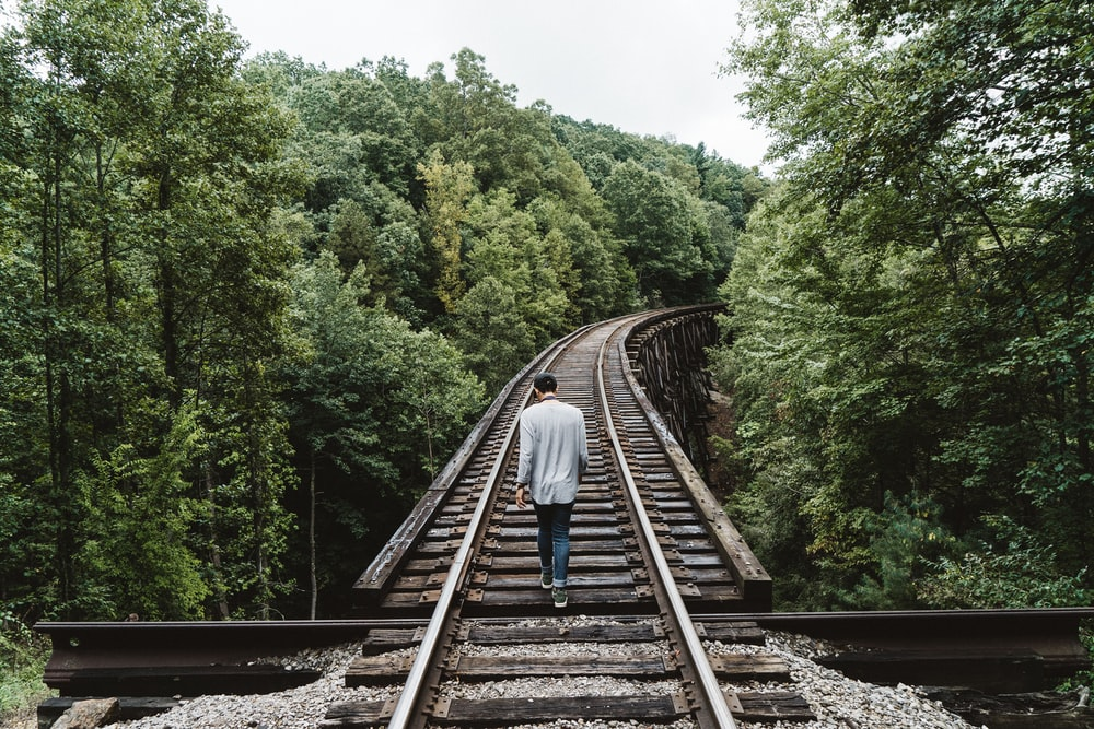 man standing on railway surrounded by trees