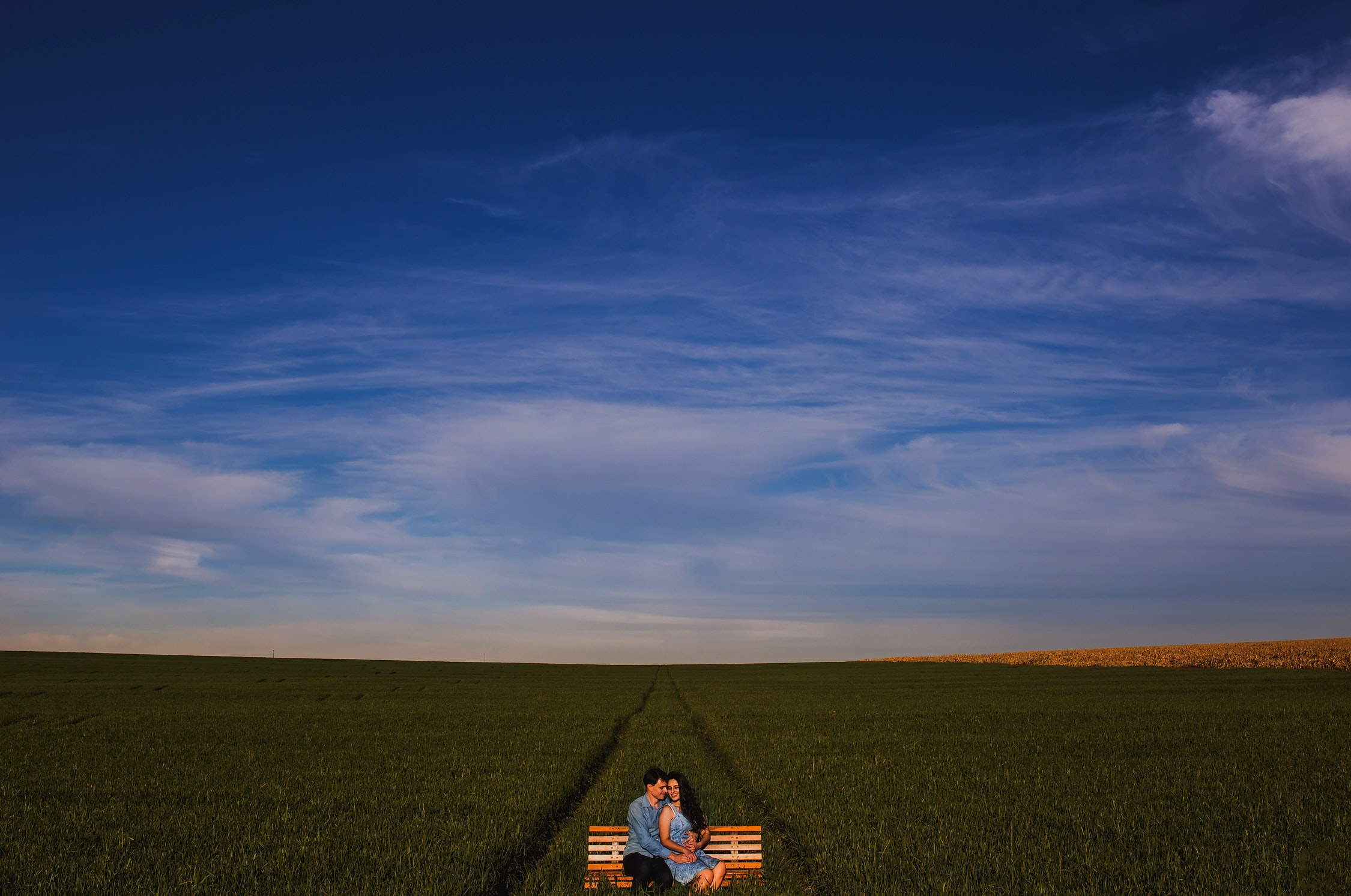 photo of two man and woman sitting on bench on grass field