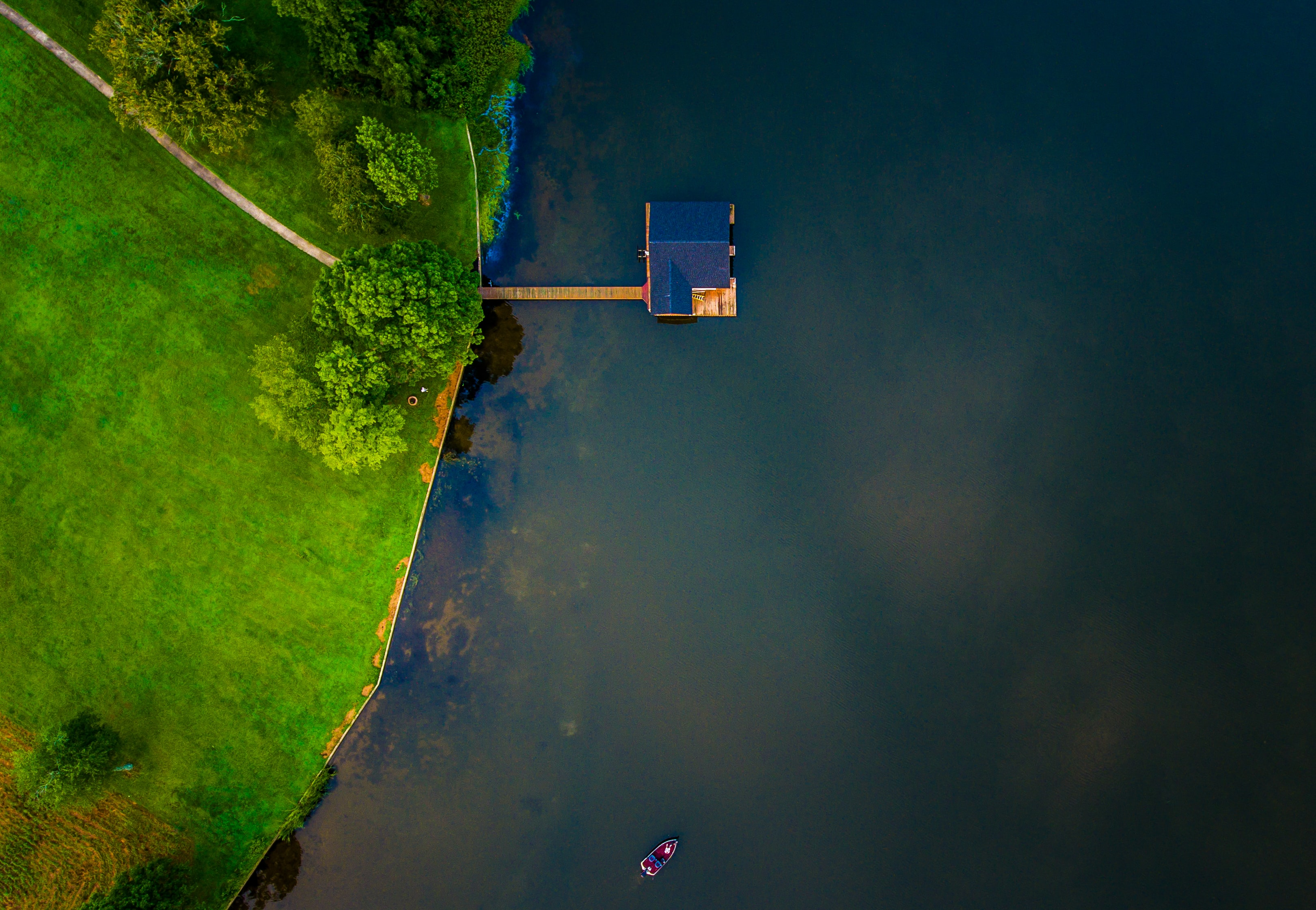 bird's eye view of blue wooden house on body of water near trees