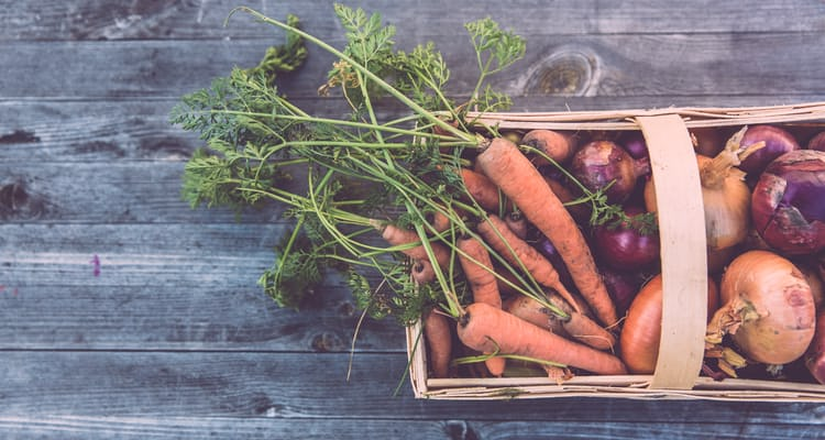 How to grow a horticultural business