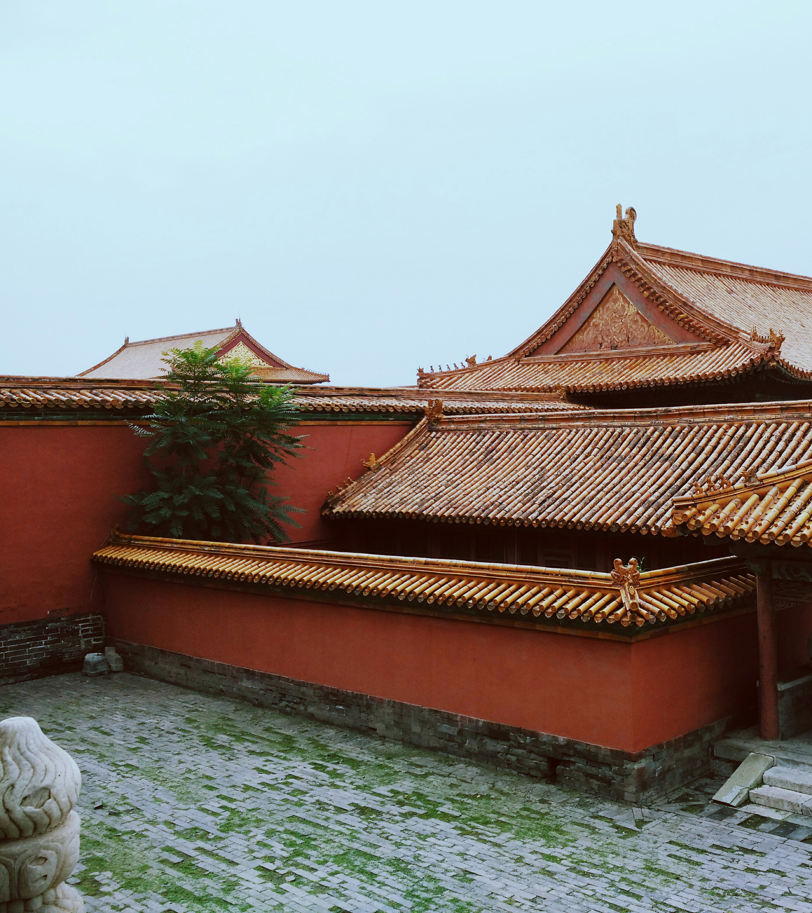 Asian temple with a grassy overgrown brick courtyard and a high red wall surrounding it