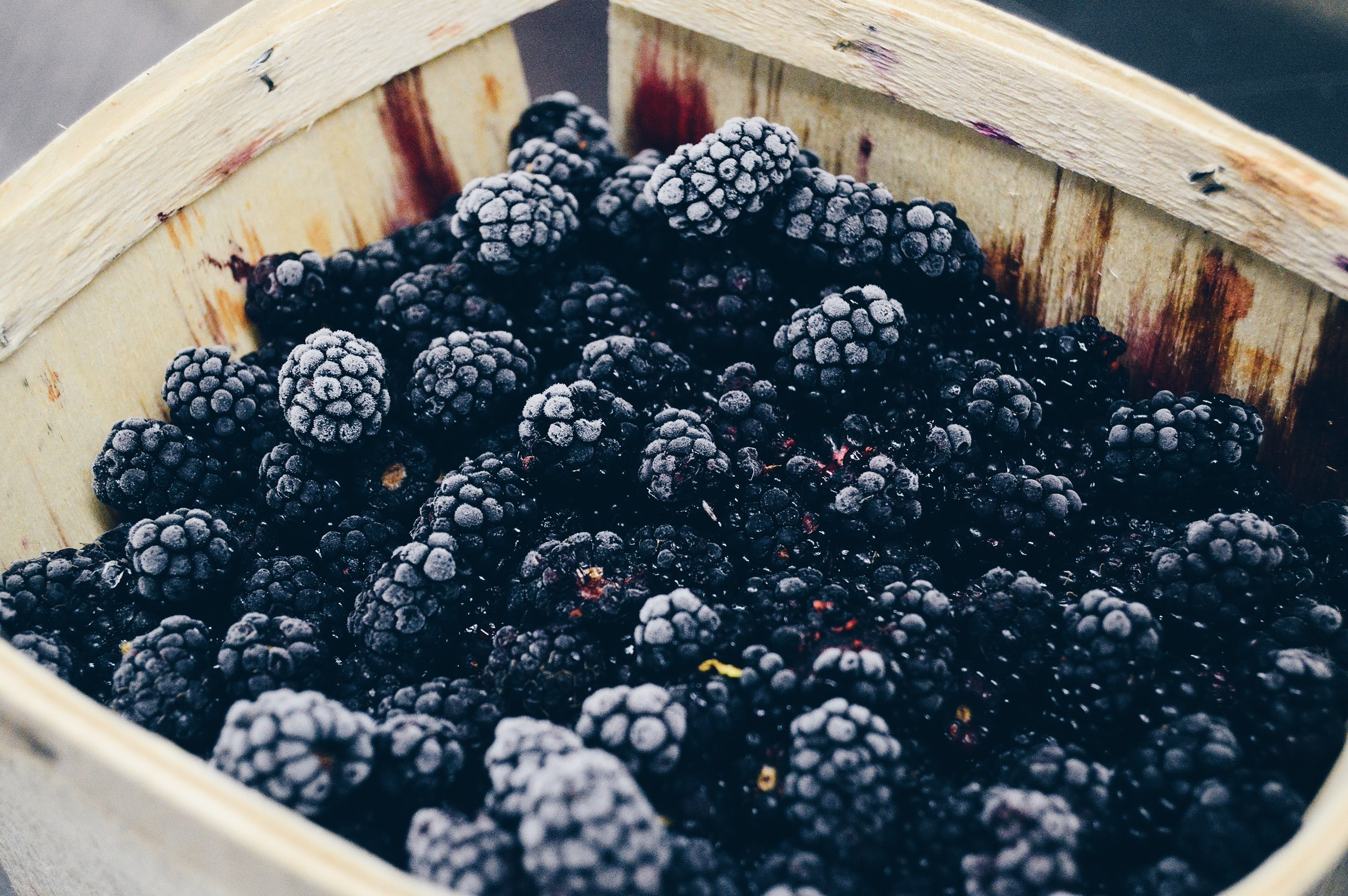 A basket full of blackberries