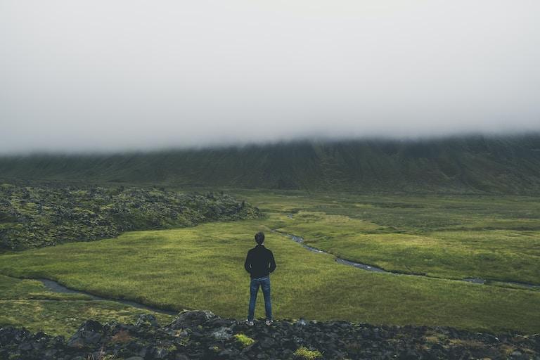 man standing while facing green land