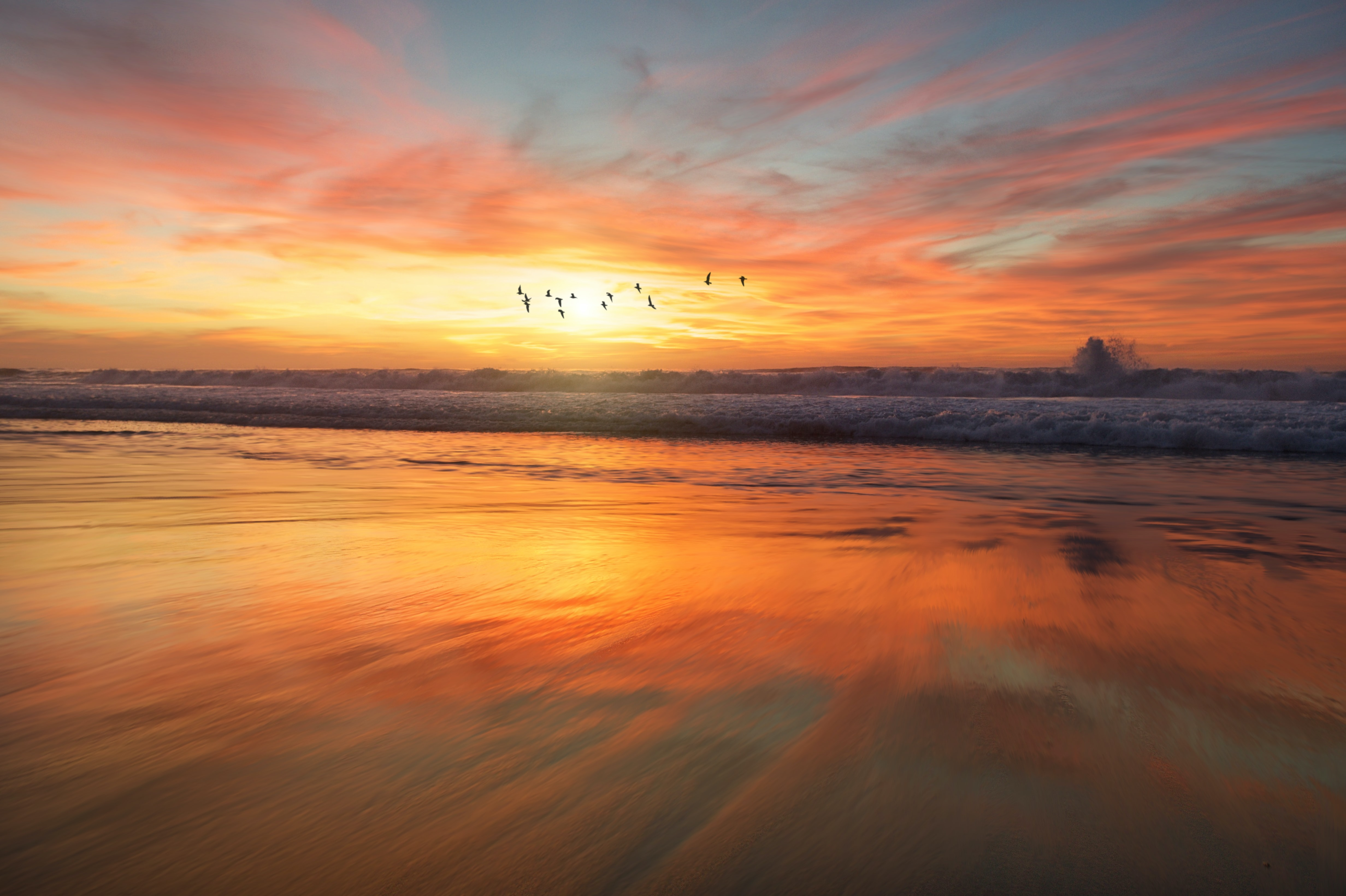 Birds flying over the high tidal waves in San Diego during sunrise
