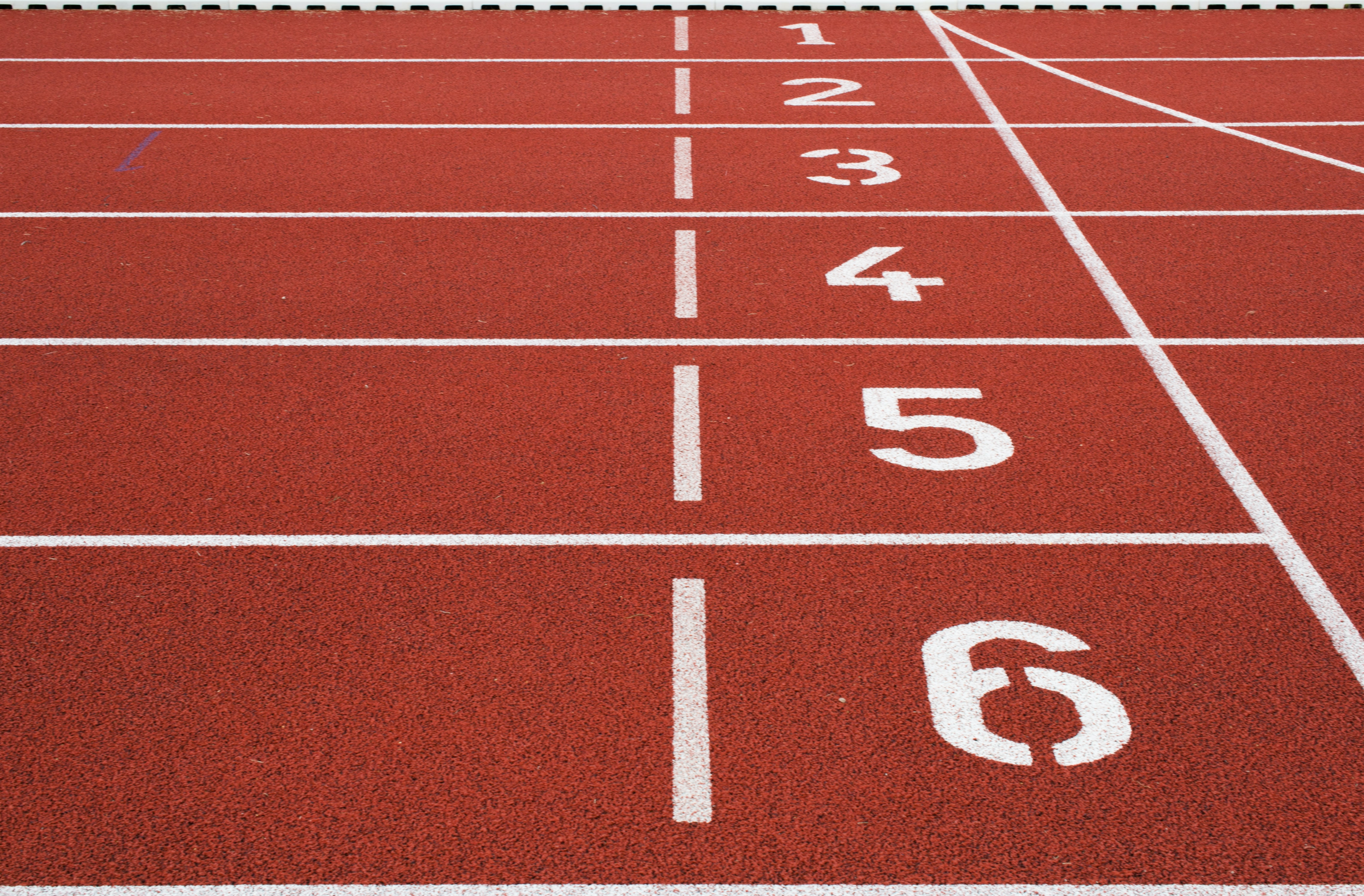 Numbers on the starting line on a red running track
