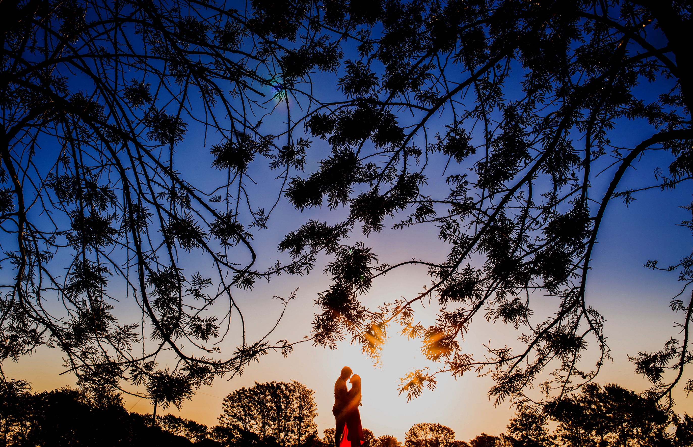 Silhouetted branches envelop a couple sharing an intimate moment at sunset