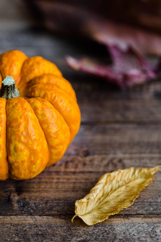 orange squash beside brown dried leaf