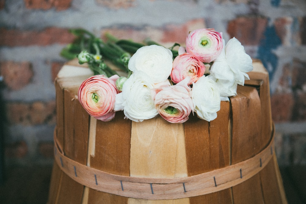 white and pink roses on brown wooden bucket