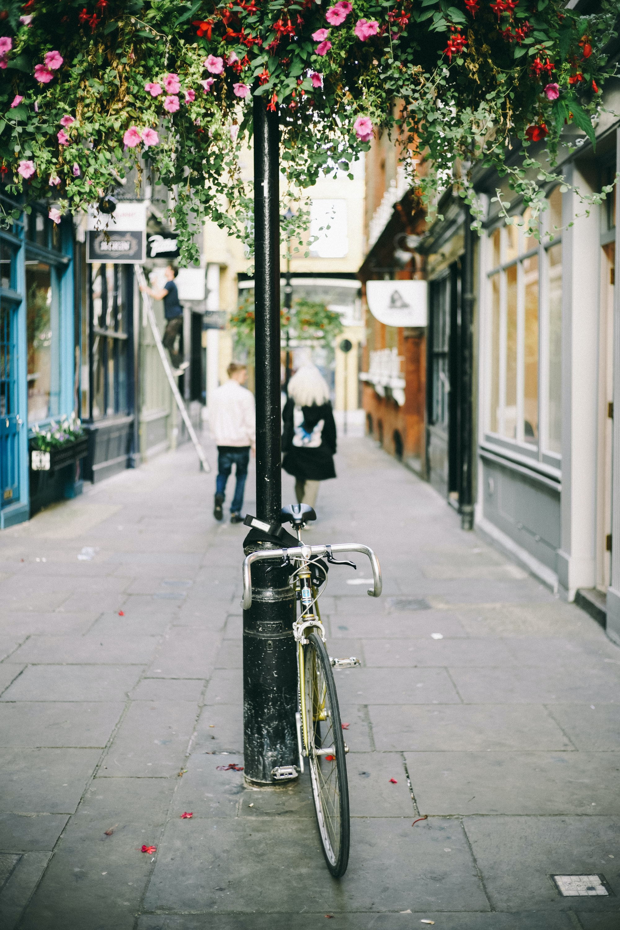 A bicycle attached to a street post under a canopy of pink and red flowers
