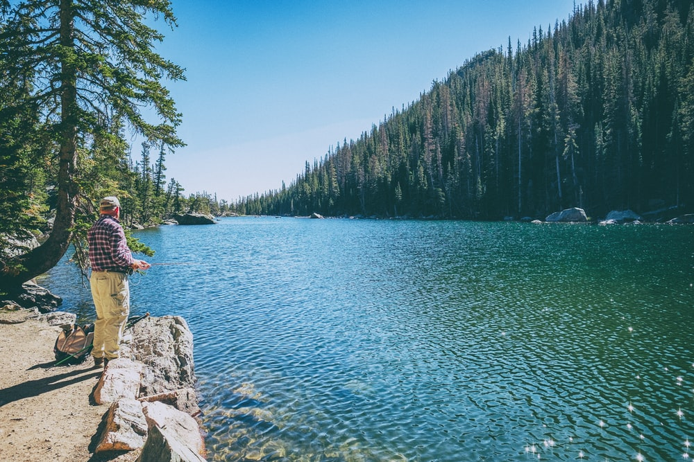 man standing on rock on front of lake surrounded with trees at daytime