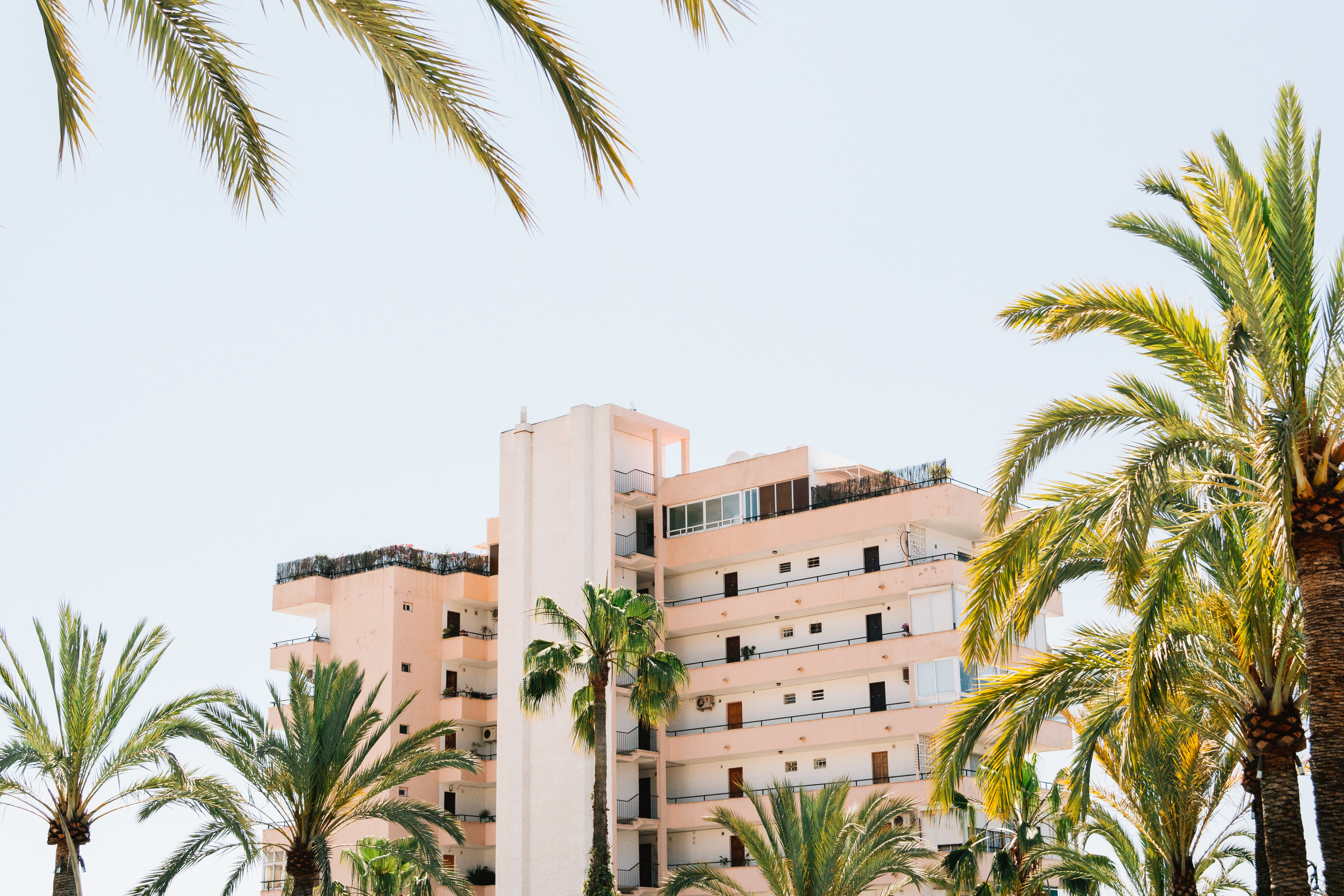 Long shot of apartment building and tower resort with palm trees in Palma