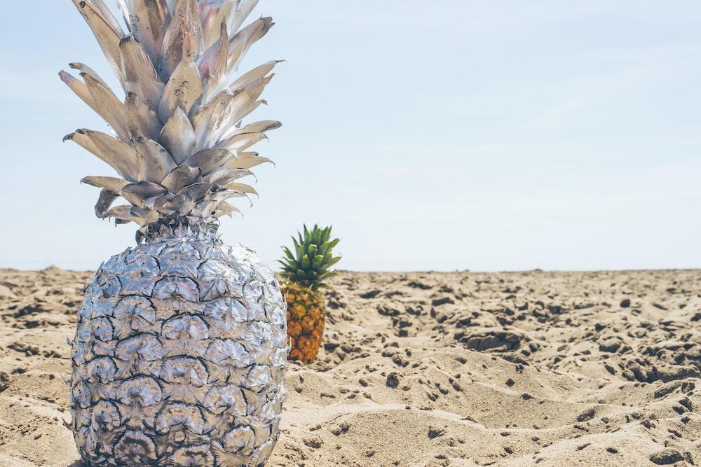 closeup photo of pineapple on shore
