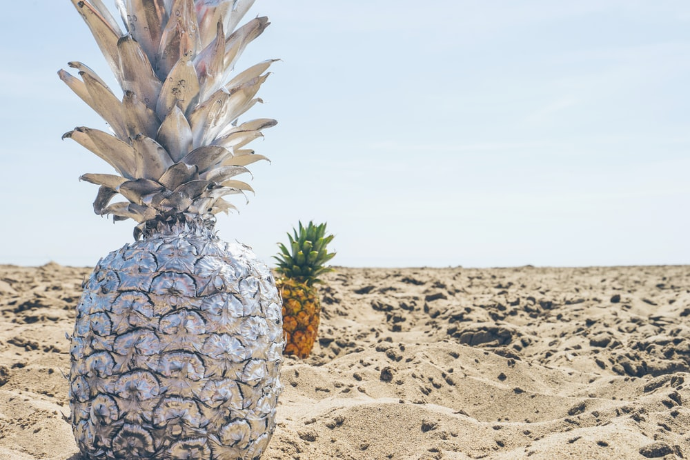 closeup photo of pineapple on shore
