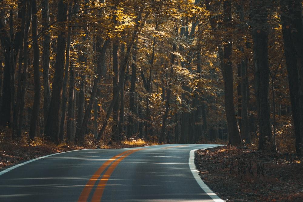 grey mountain pass road