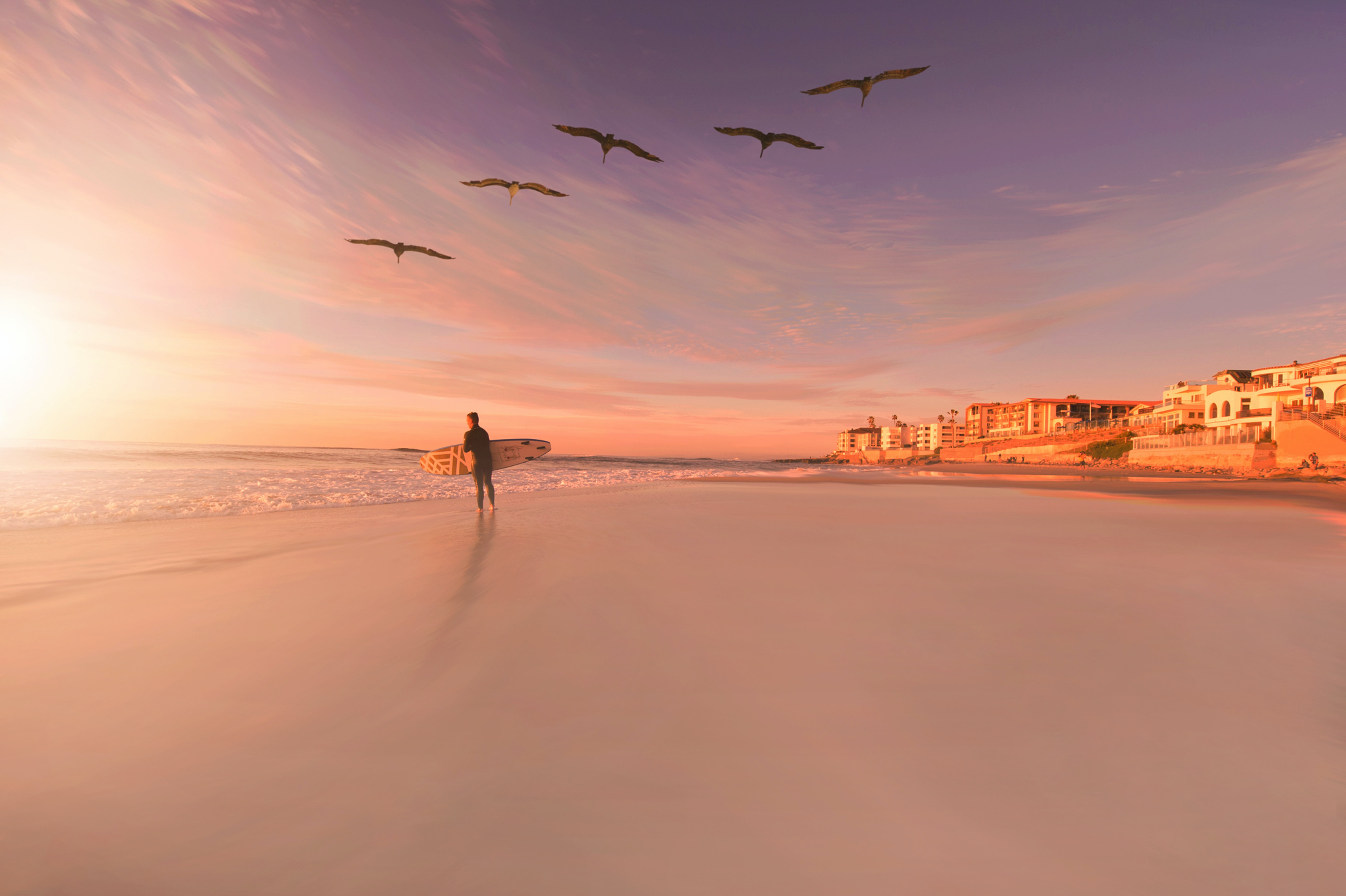 Surfer on a sandy beach beneath a flock of birds during sunset in San Diego