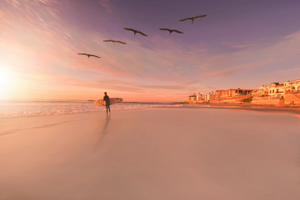 person standing in seashore with birds flying in sky