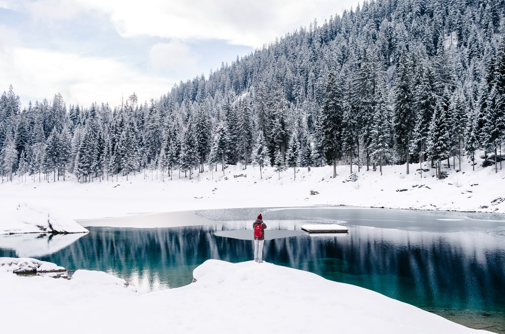 person standing beside body of water surrounded by snow field near trees