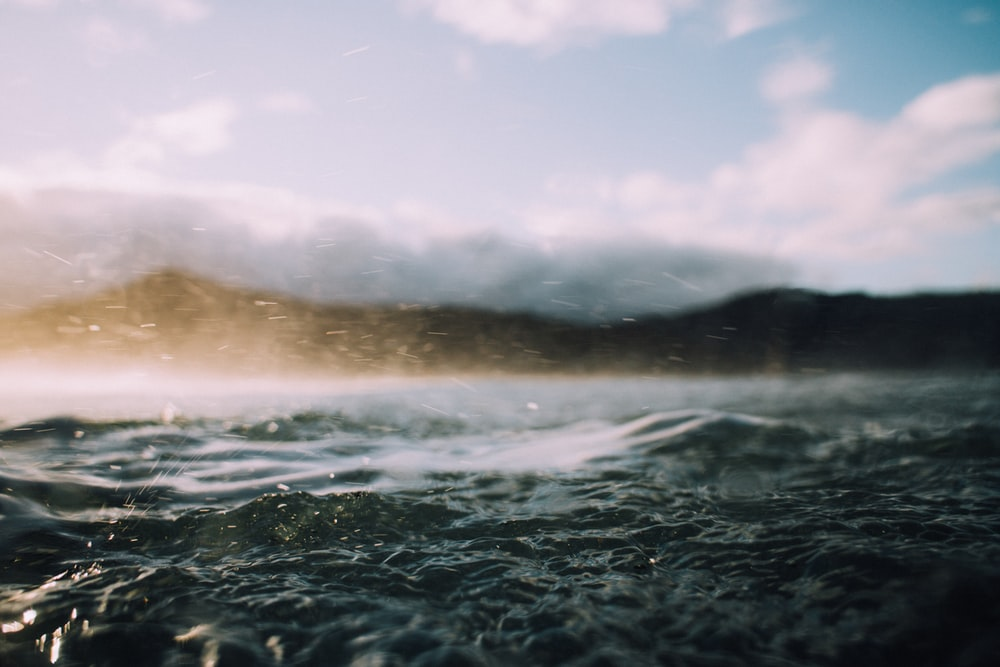 shallow focus photography of sea