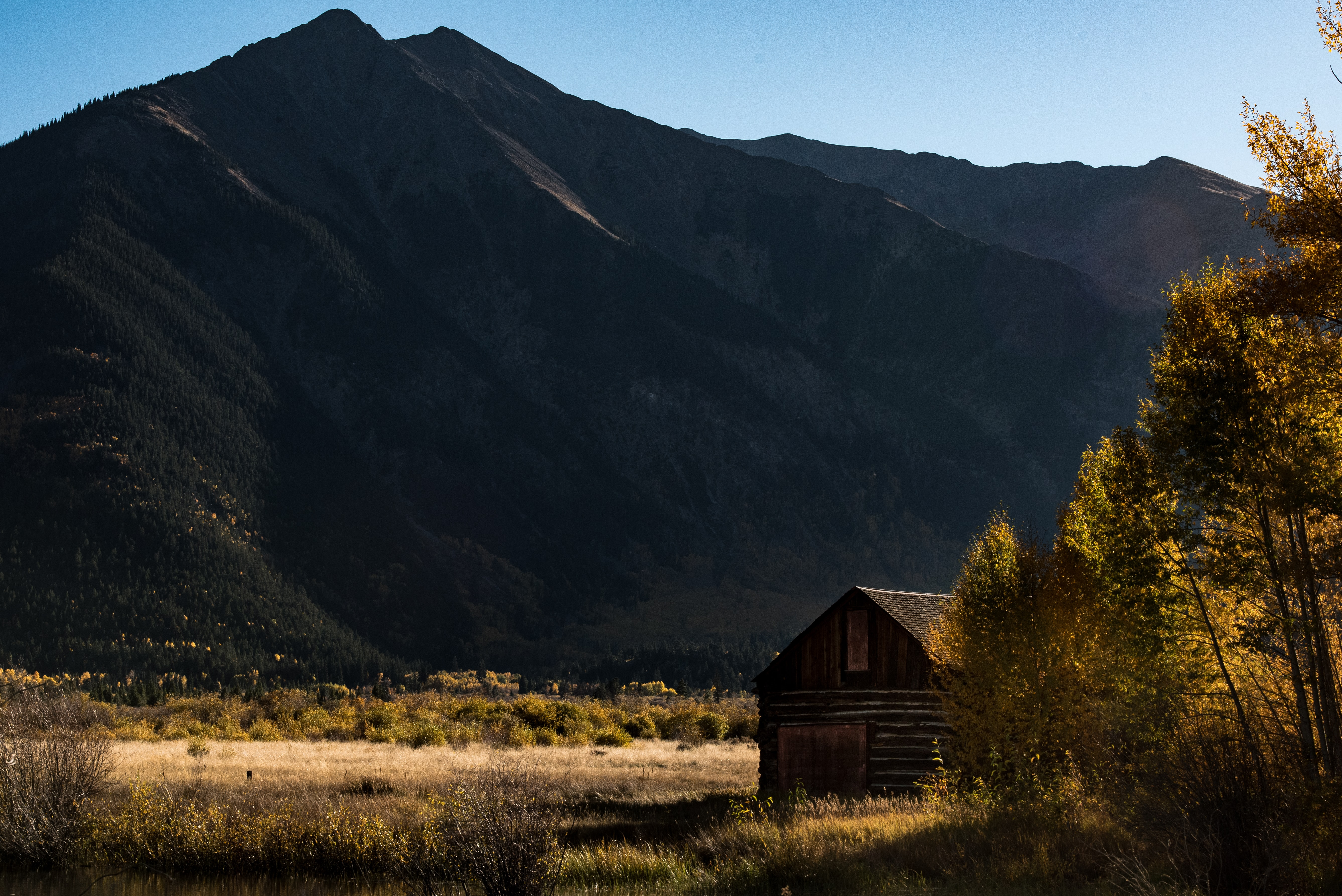 brown wooden cabin near road