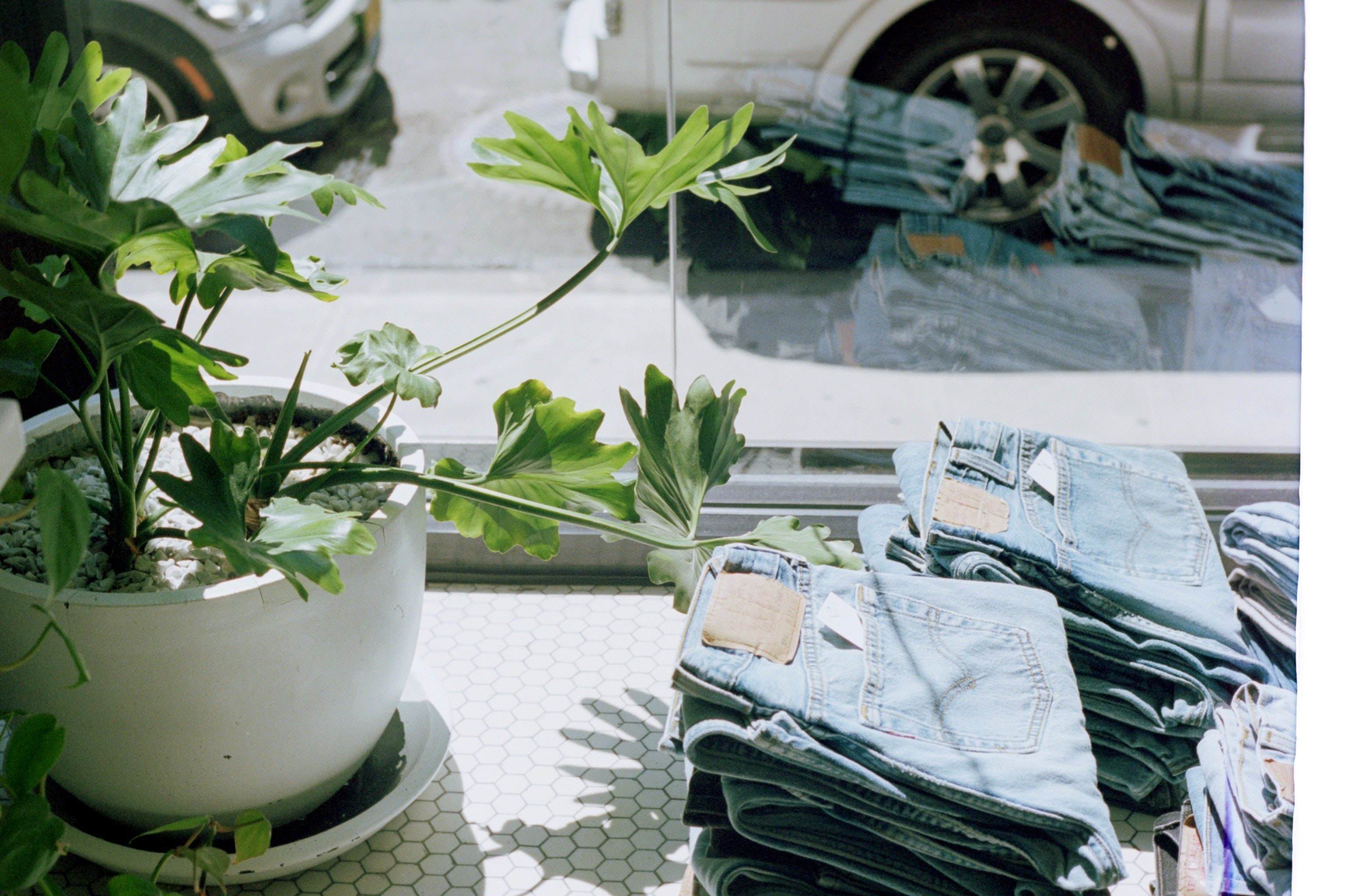 Pairs of folded jeans and a potted plant behind a window
