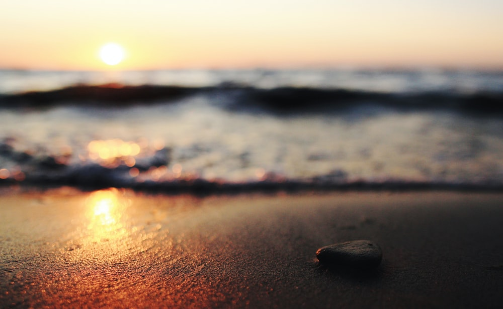 selective focus photography of pebble on seashore at sunset