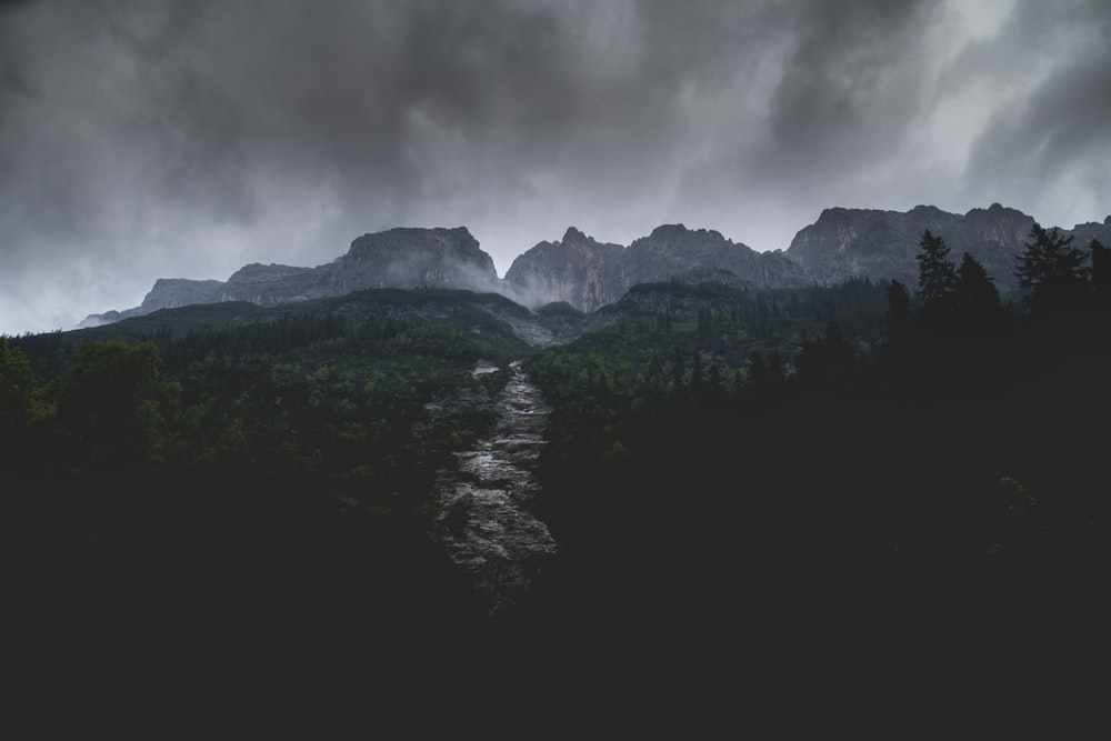 river between trees near mountain under gray clouds