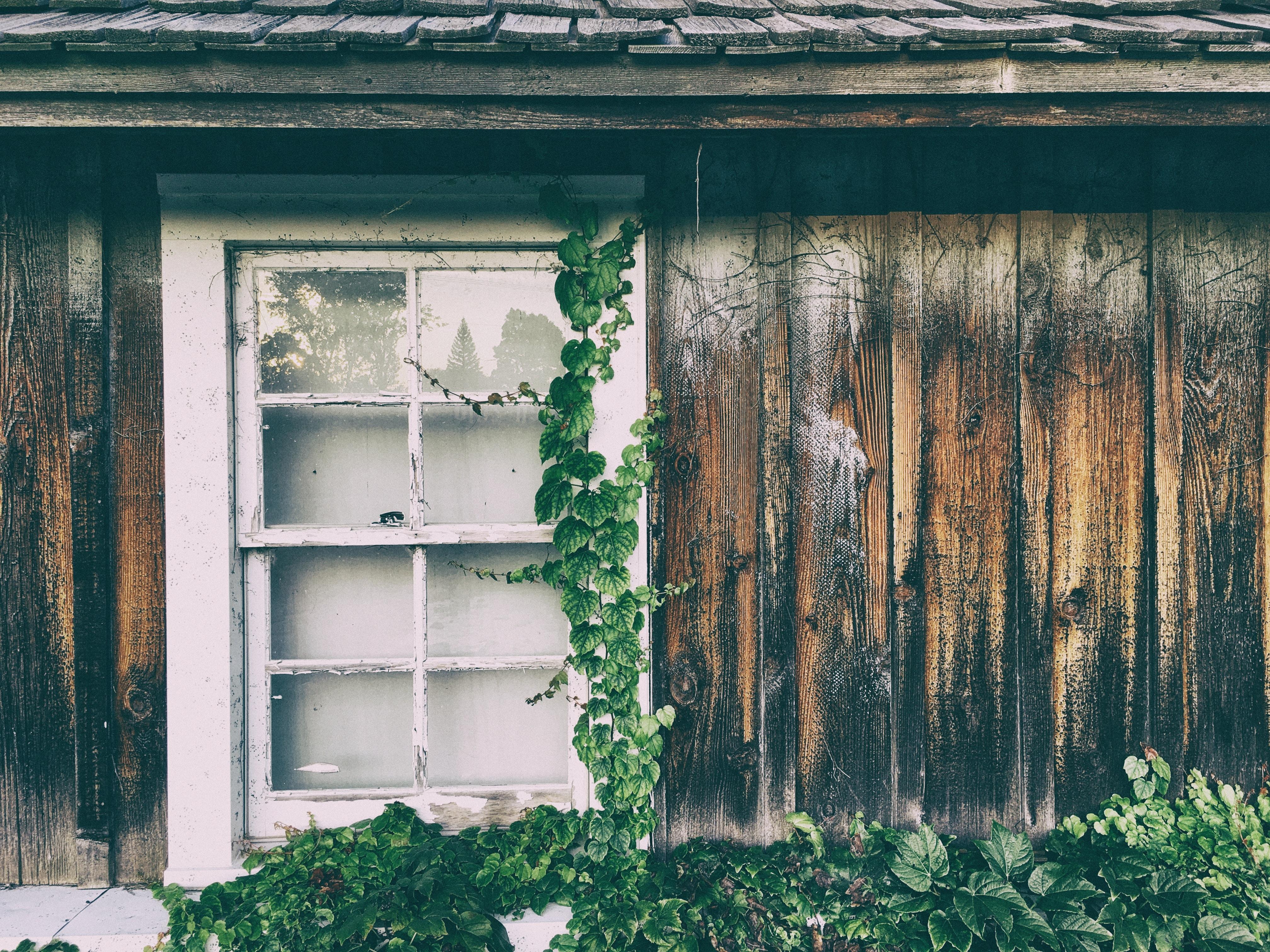 white wooden framed glass panel window