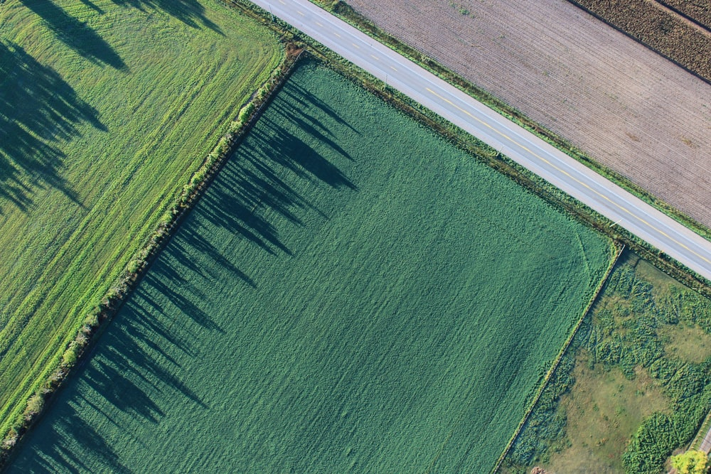bird's eye view photography of green field