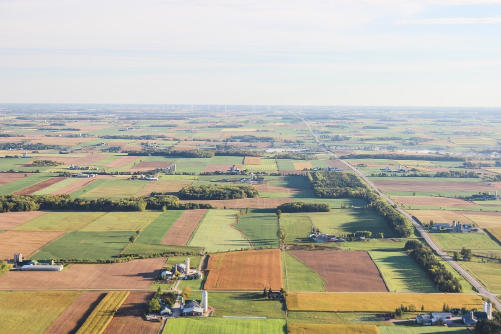aerial photography of brown and green fileds
