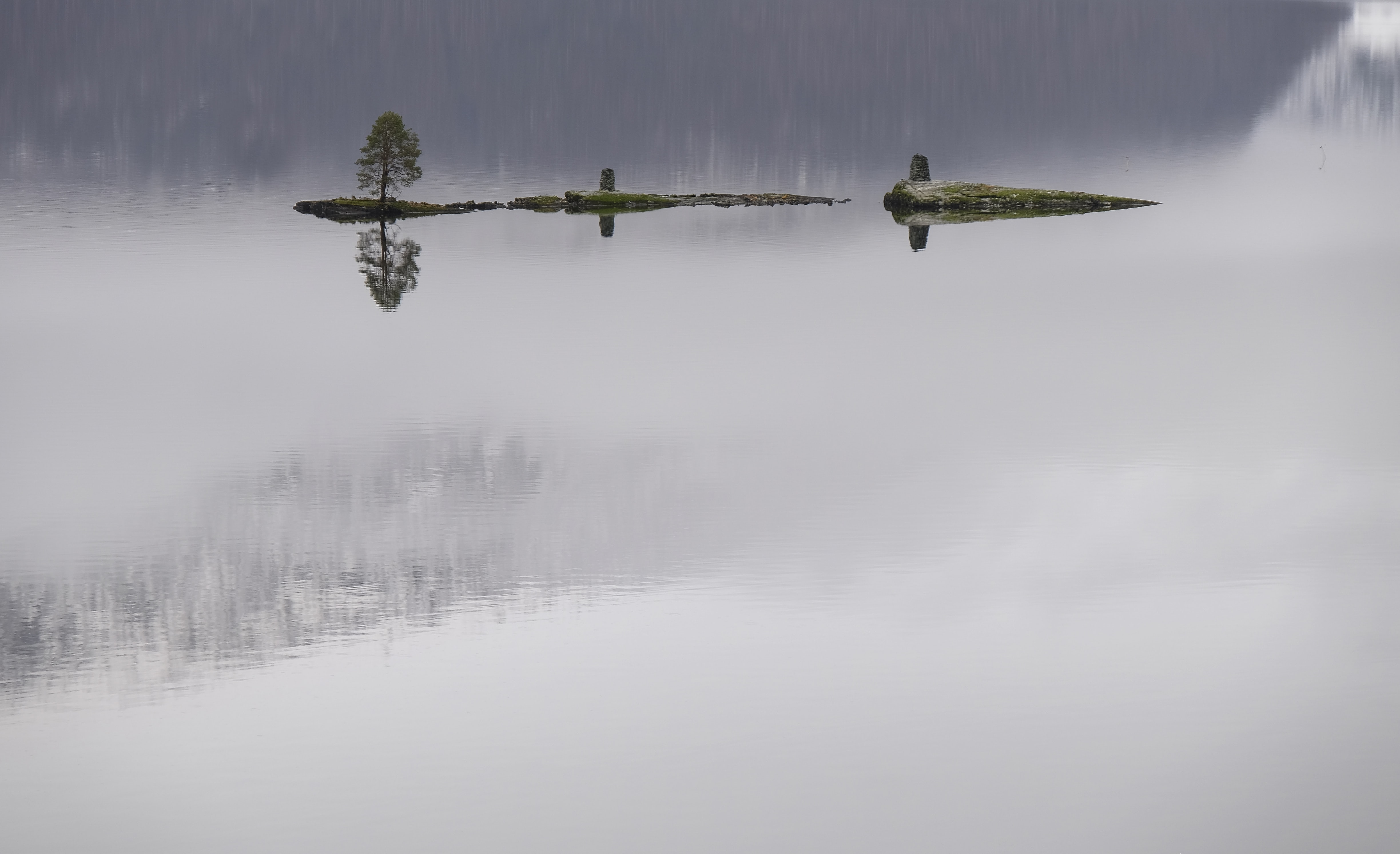 Panoramic shot of a single tree on a tiny island, in a foggy lake.