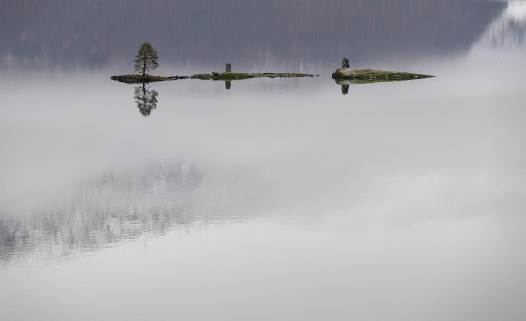 foggy lake island