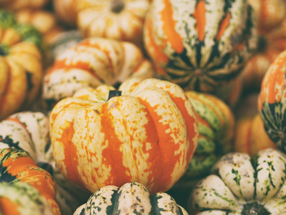 selective focus photography of pumpkins