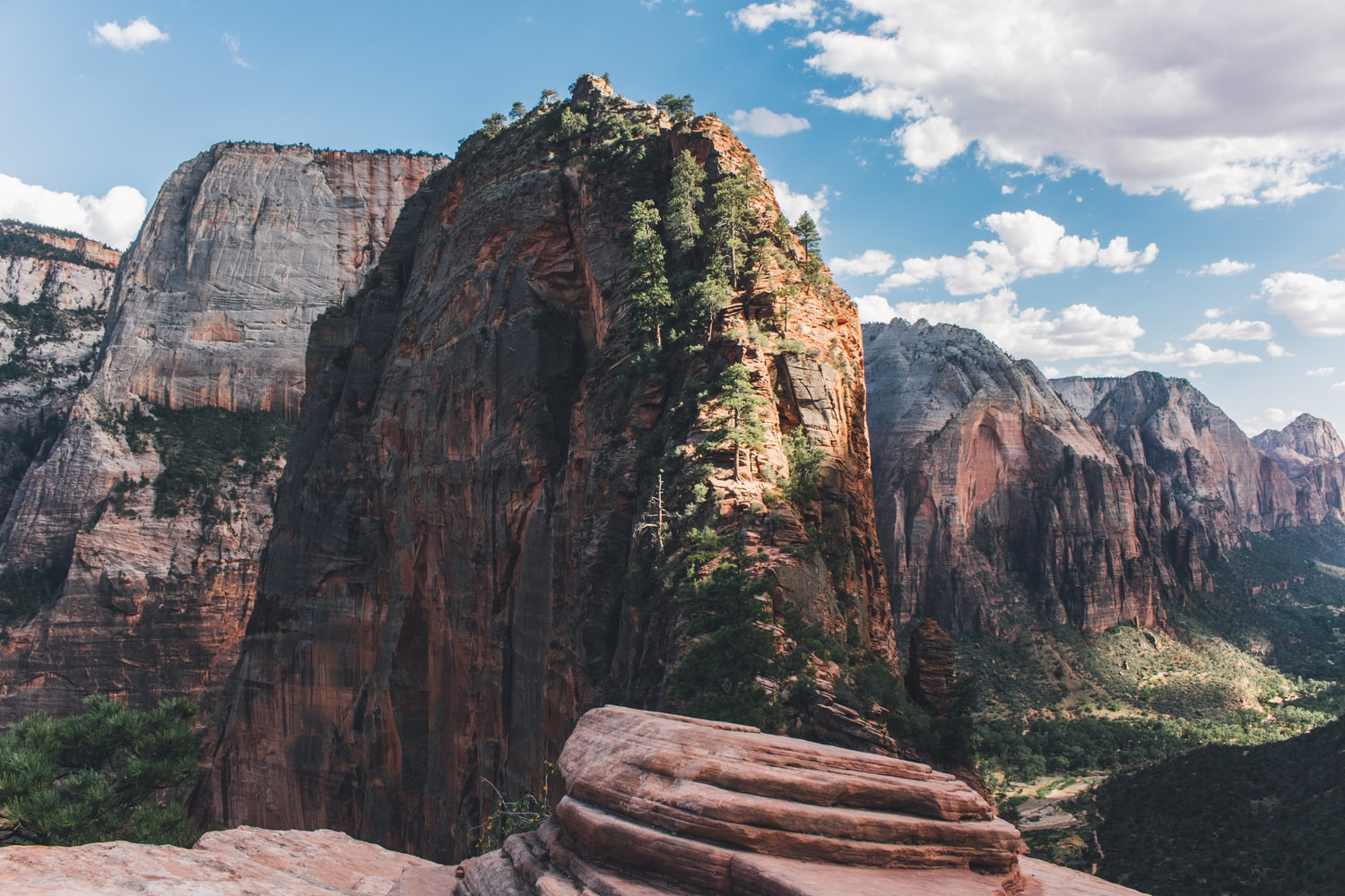 at the top of angels landing national park