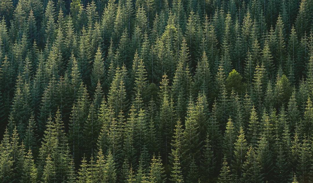 Random Forest regression model Advanced Topics (+ Python