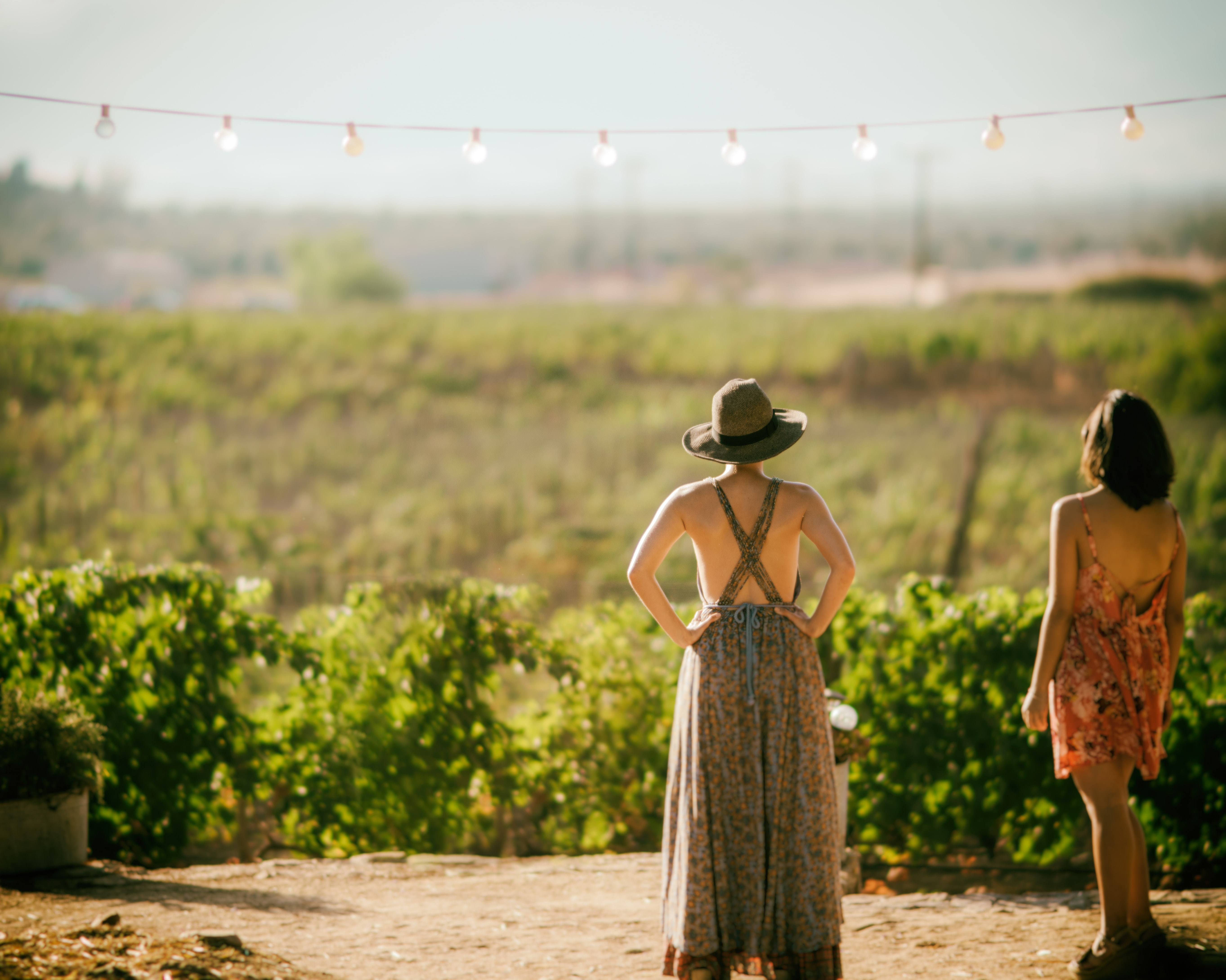 Women in summer dresses standing outside a Mogor vineyard looking upon the field under the sunlight