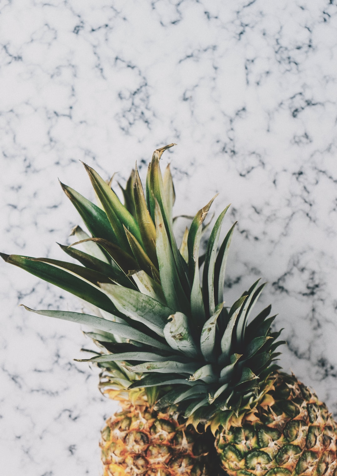 free high-resolution stock photo of pineapples