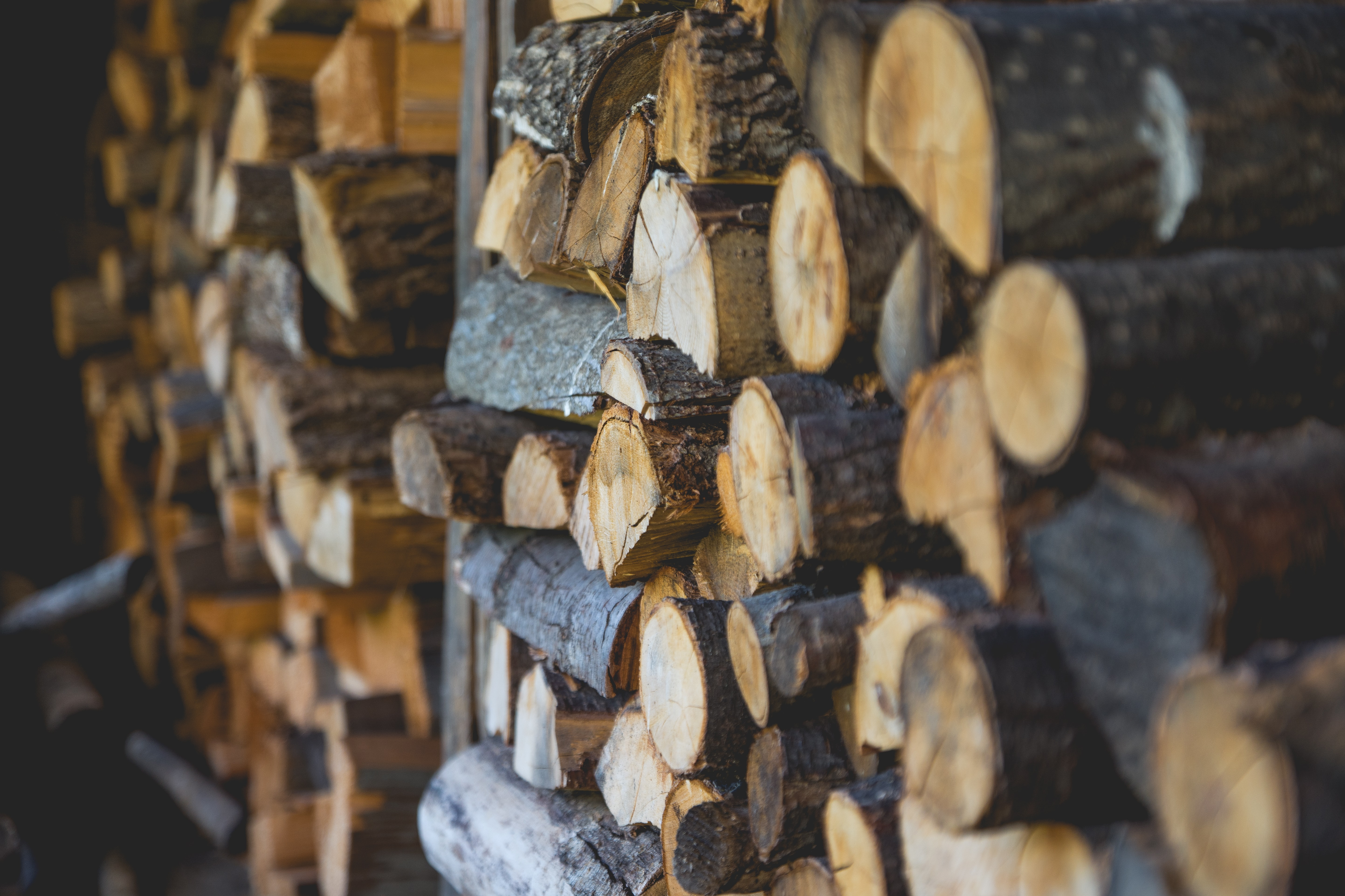 Stacks of firewood near a wall