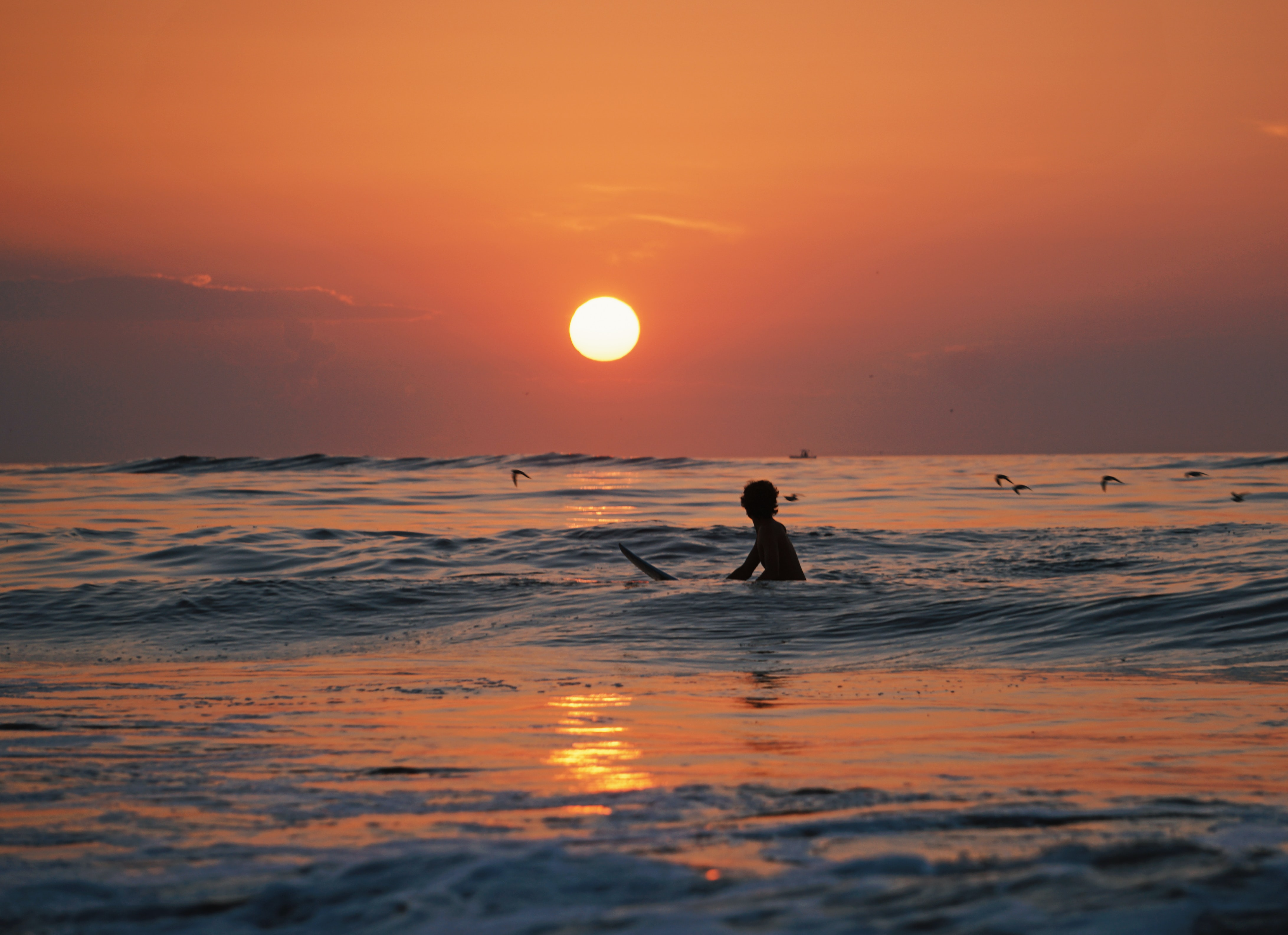 A surfer in the sea at Ocean City, with birds flying over the water and the sun setting over the horizon