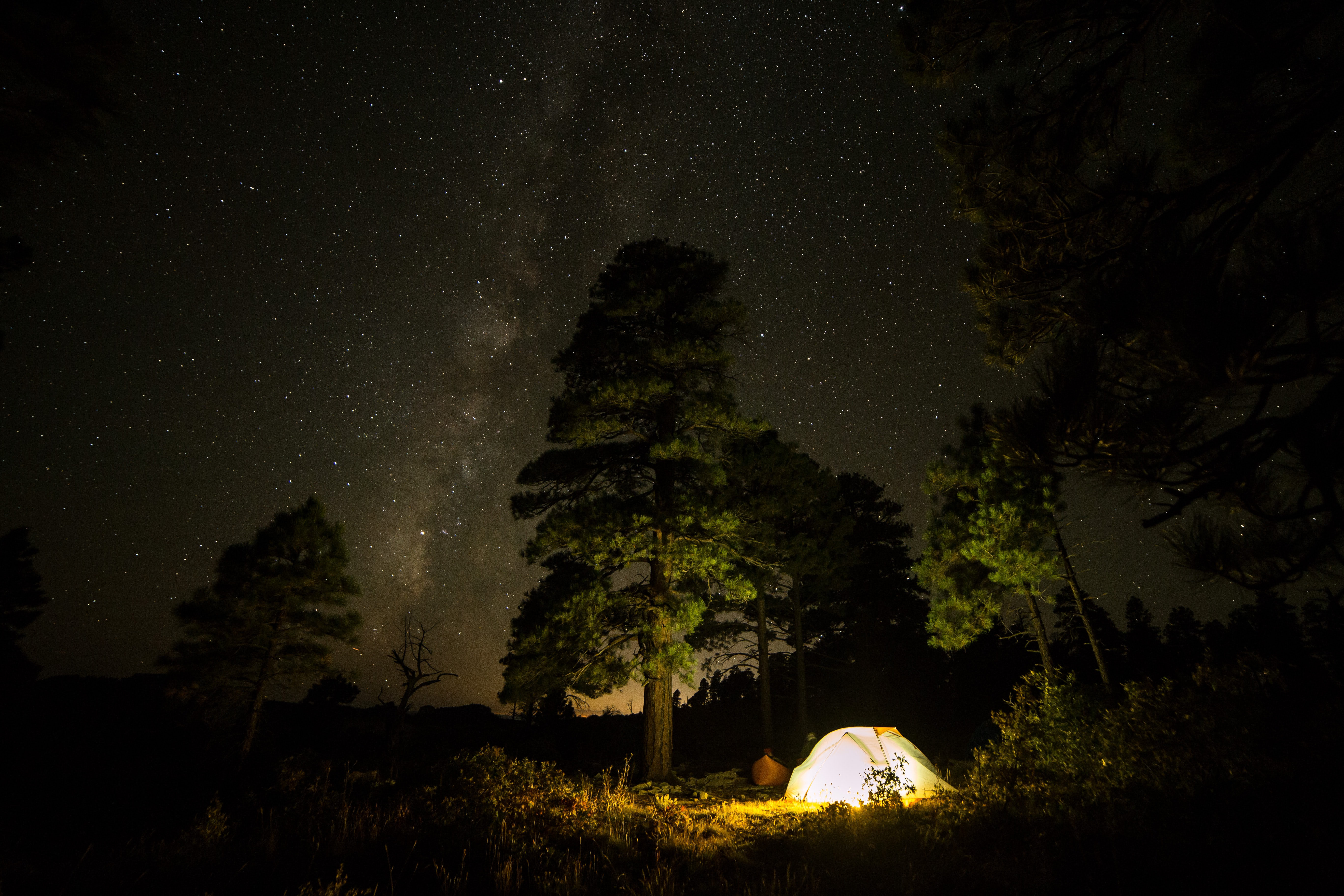 silhouette of people having camping during nighttime