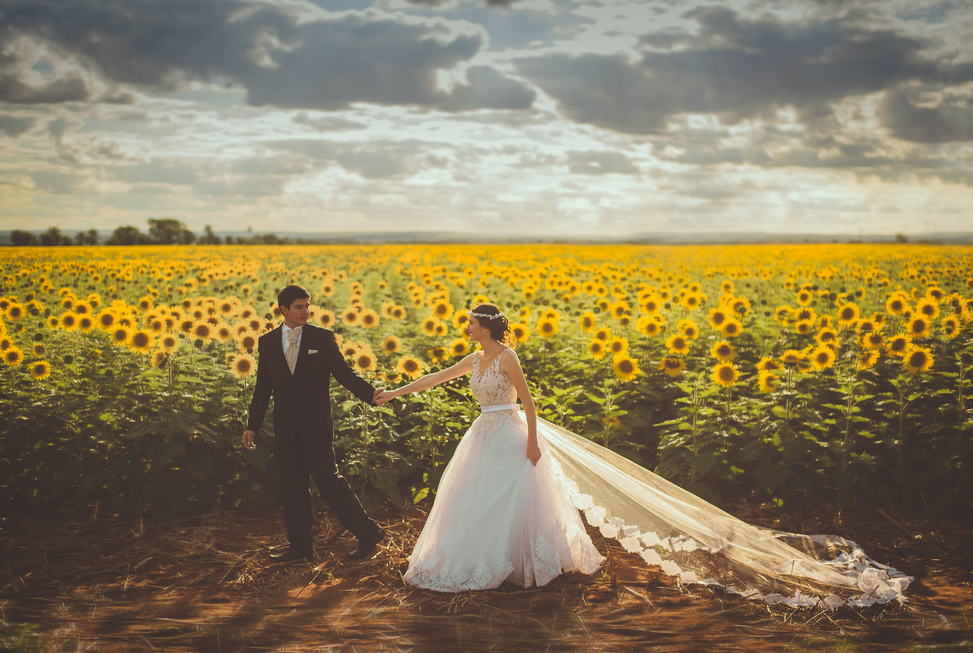 Newlyweds posing for photos in a field of giant sunflowers