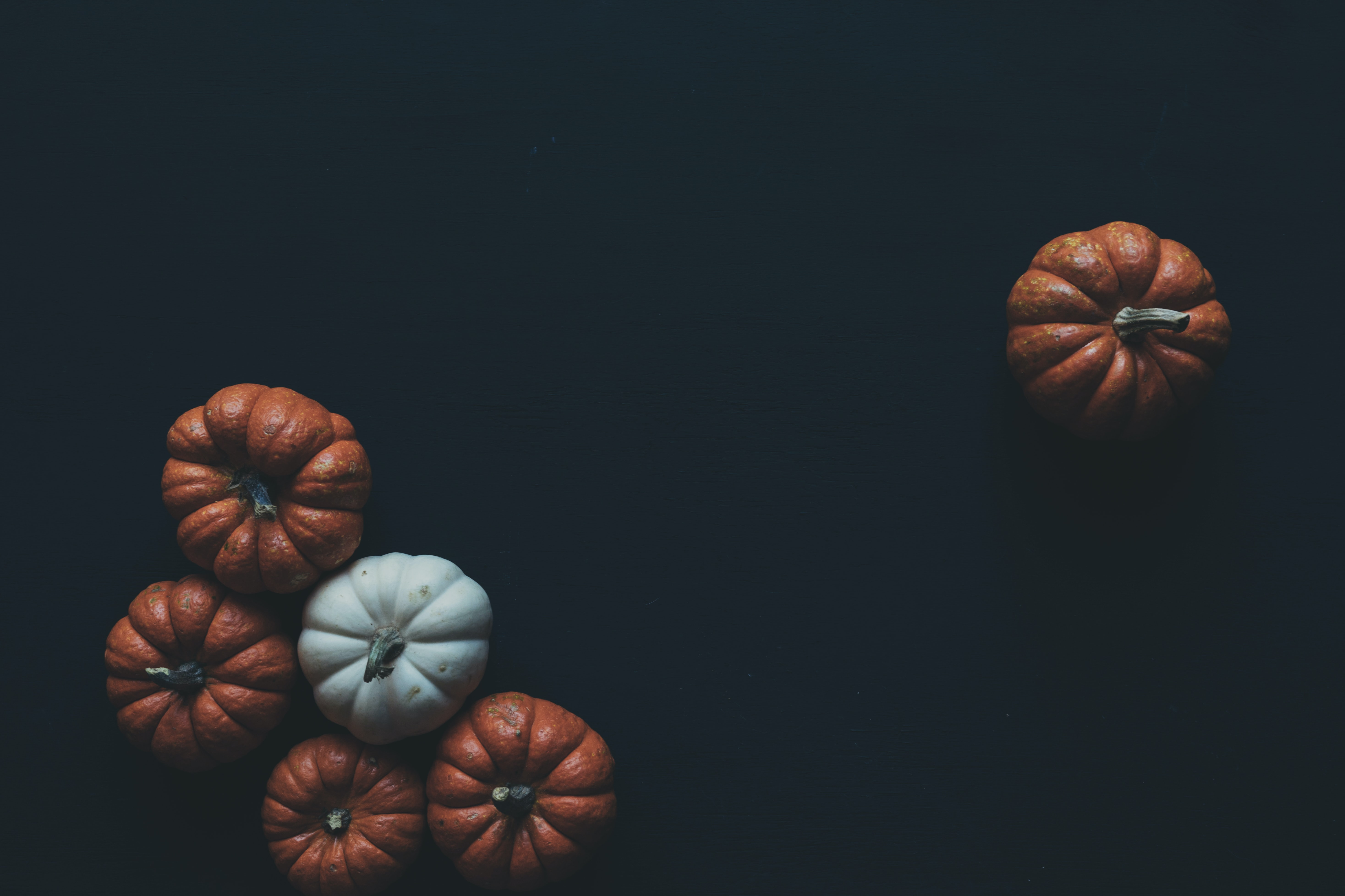 The tops of small, decorative orange and white pumpkins arranged on a black surface