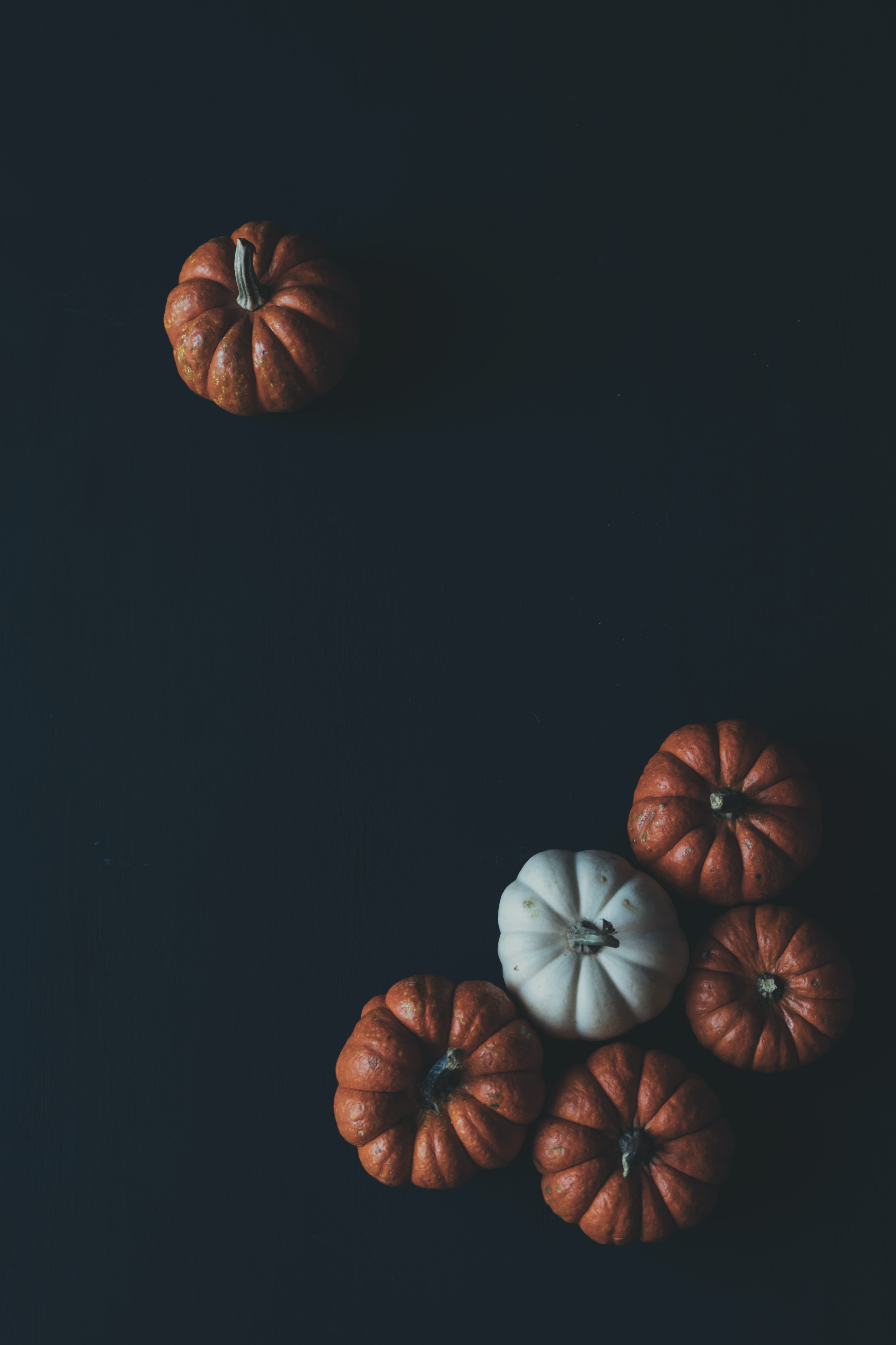 Orange and white pumpkins on a black surface by Scott Webb Photography