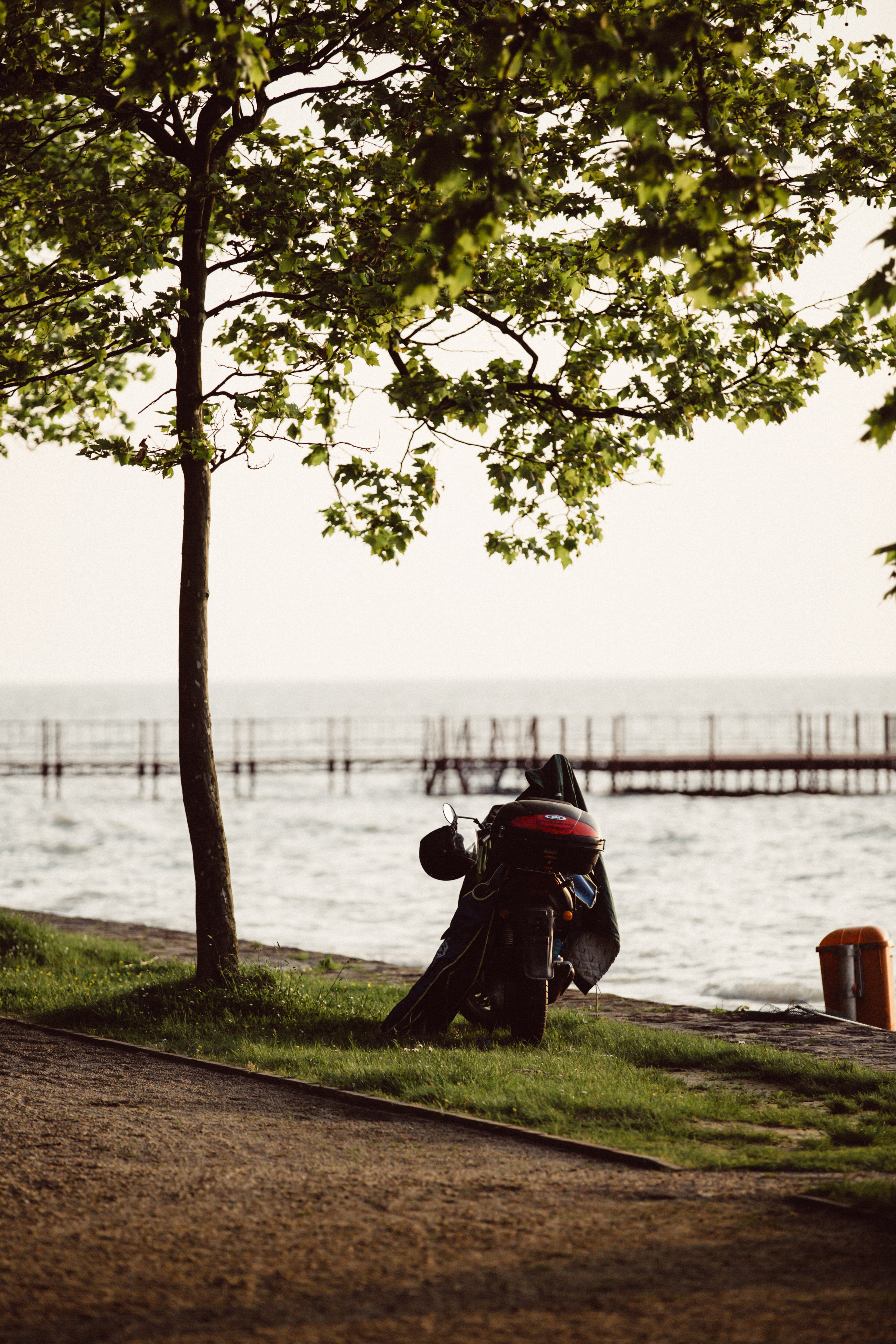 A motorbike stands aside a path, beneath a tree, in front of Lake Balaton