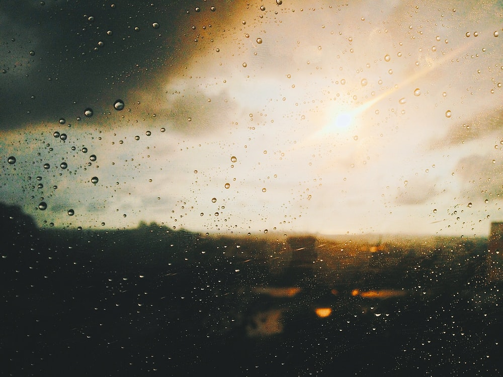 500 Rain Drop Pictures Hd Download Free Images On Unsplash