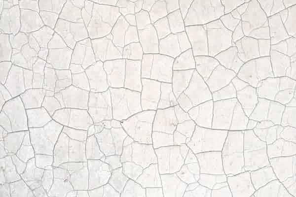 החידושים של ויניקוט אודות טיפול במבוגרים: סקירת מאמרו של מייקל אייגן