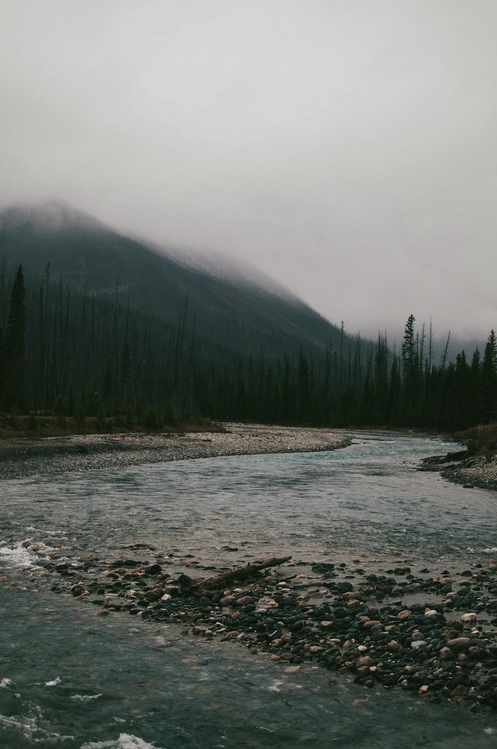river under white sky