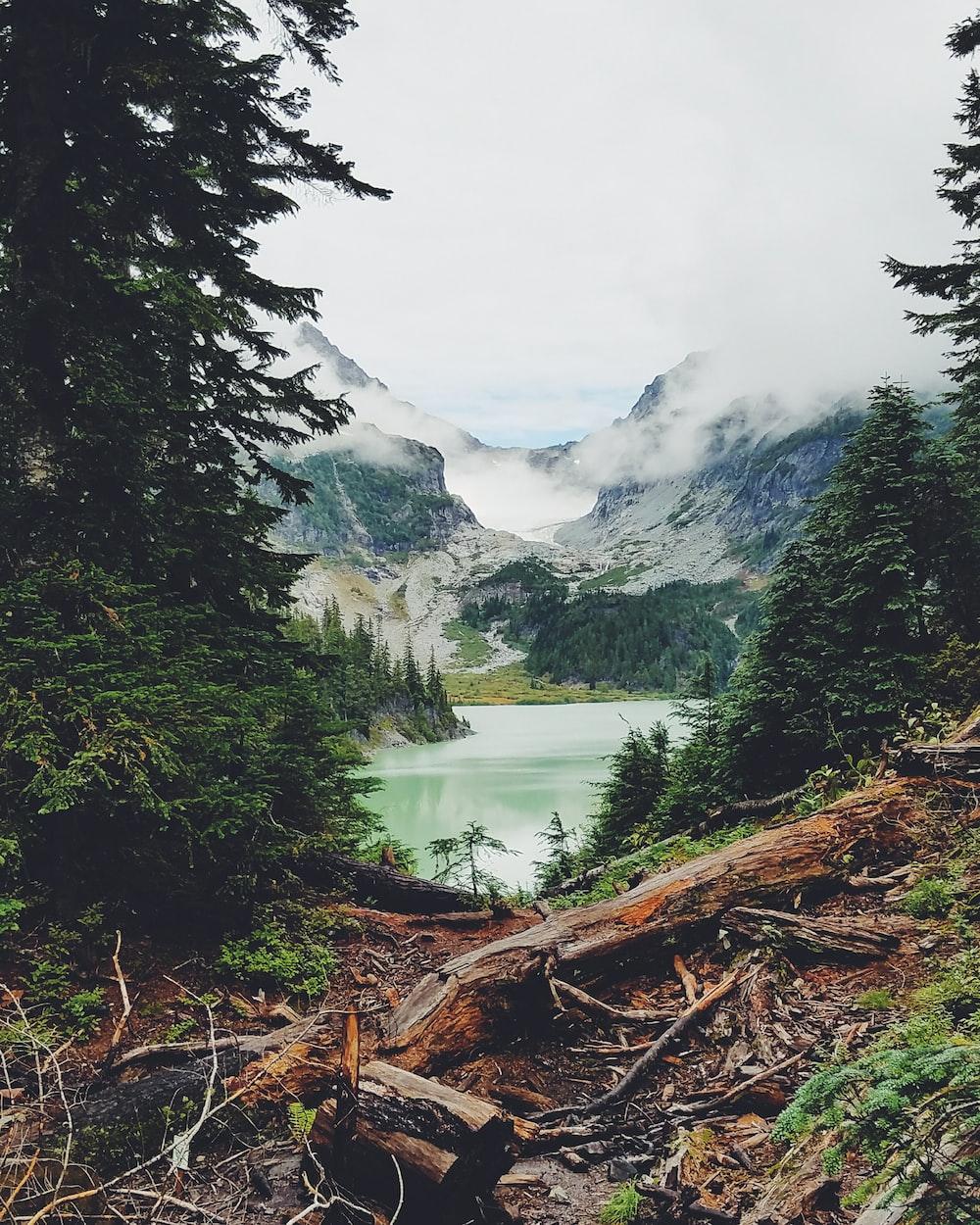 lake water scenery