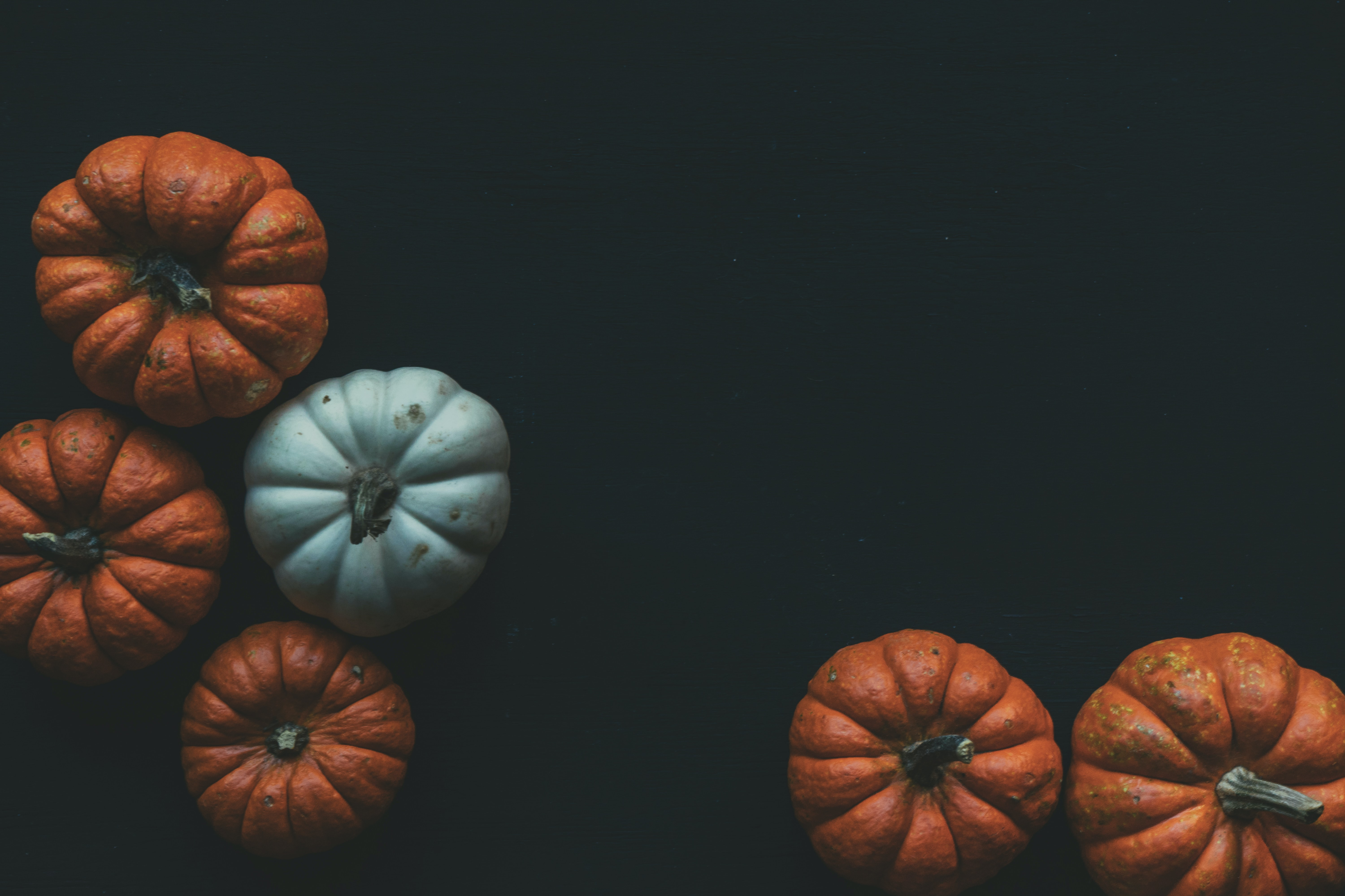 An assortment of pumpkins with a dark background.