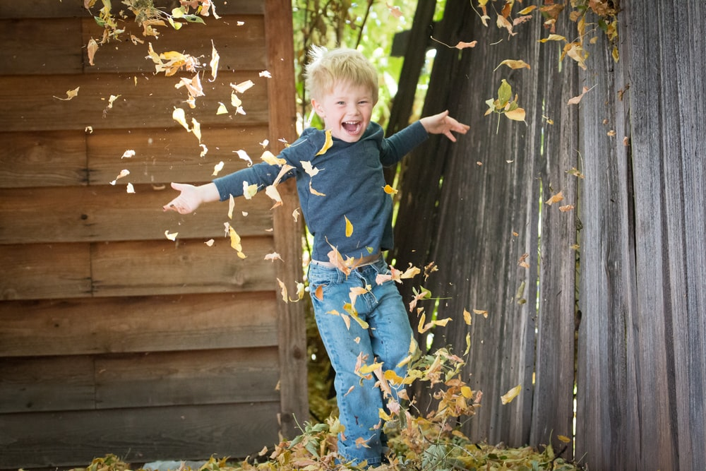 photo of boy near fence with falling leaves