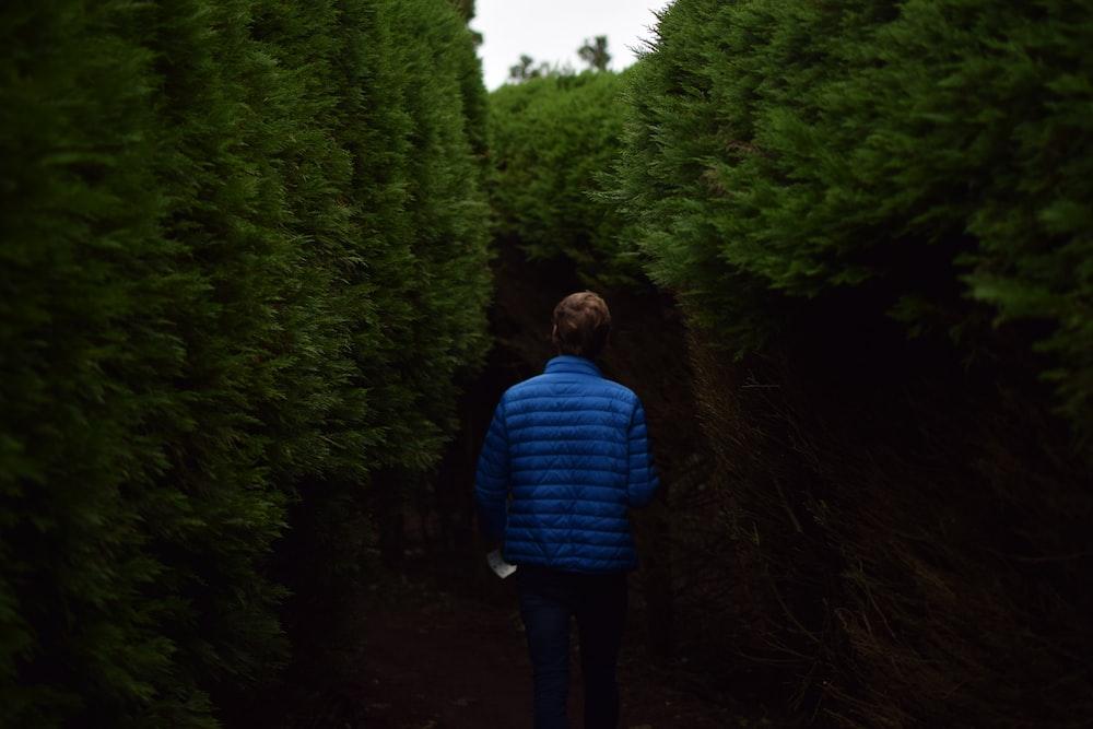 man walking near tall trees